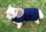 Dog Coat Jacket Quilted and Padded Navy